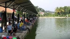 http://aquaticessen.blogspot.com/2017/01/umpan-ikan-mas-air-keruh-hijau.html