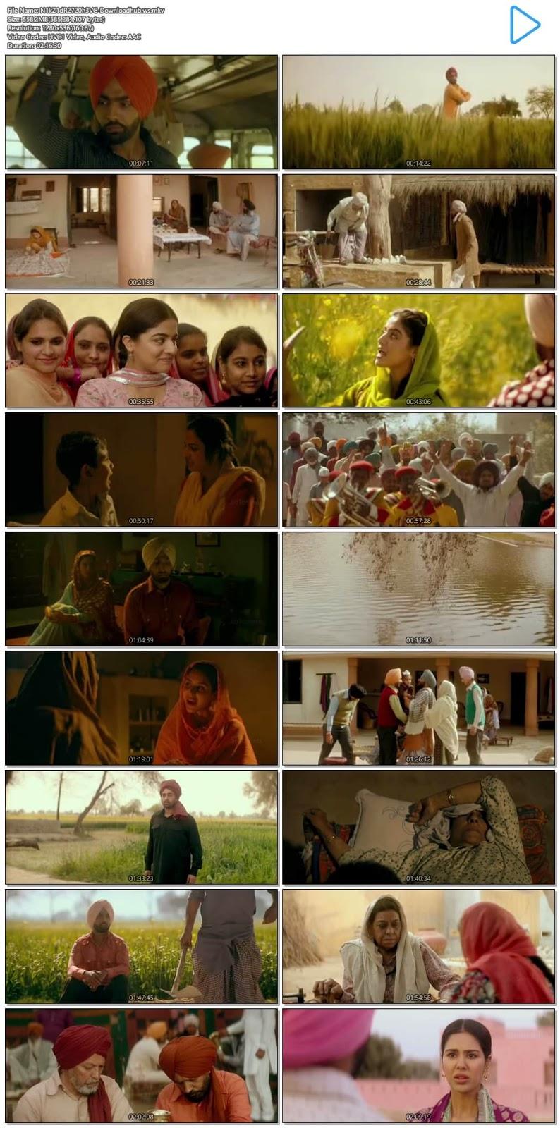 Nikka Zaildar 2 2017 Punjabi 720p HEVC HDRip