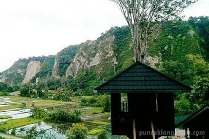 Pesona Rumah Pohon Ngarai Sianok, Bukittinggi Sumatera Barat