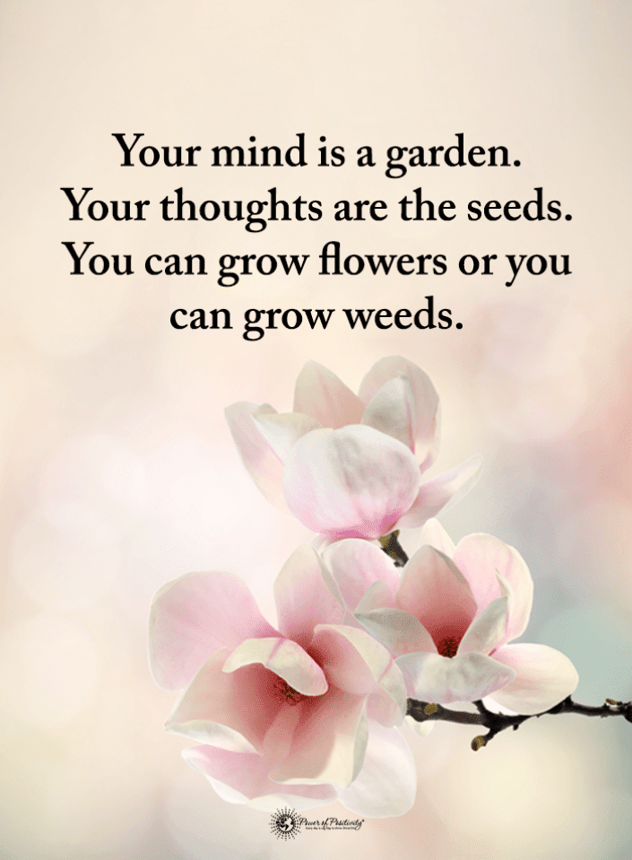 Mind Quotes, Thoughts Quotes,