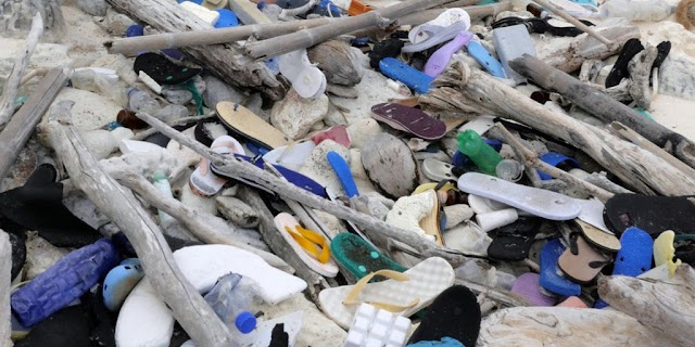 238 tons of plastic waste invaded the islands of paradise