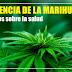 La potencia de la Marihuana, una lucha distinta a la distribución