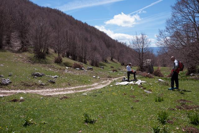 Valle della Cesa