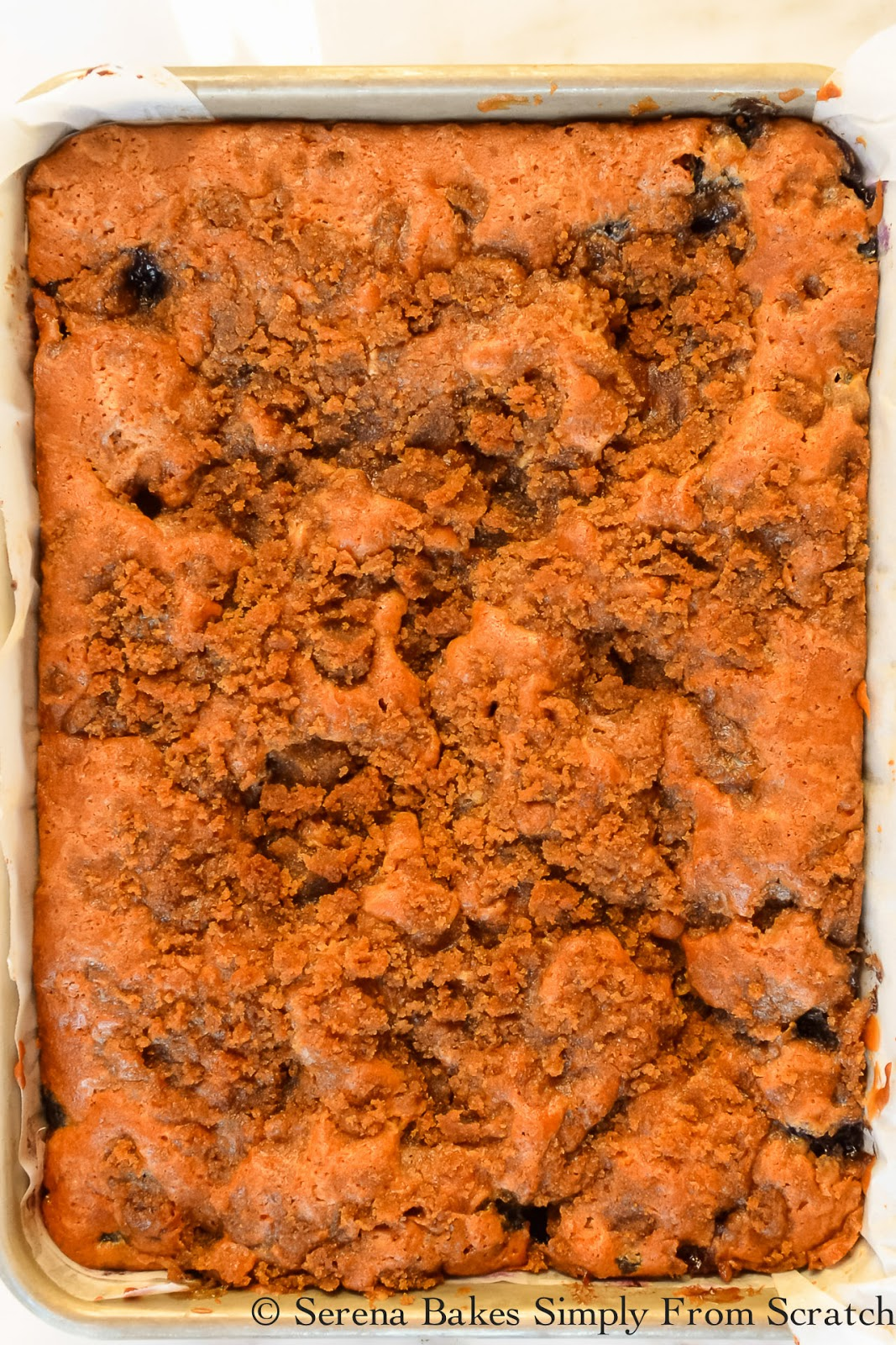 Blueberry Coffee Cake Cinnamon Swirl Brown Sugar Crumb Baked