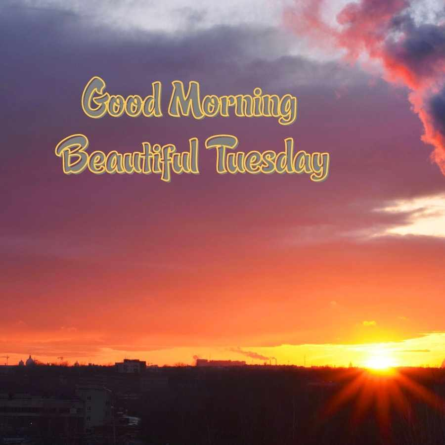 happy tuesday morning images