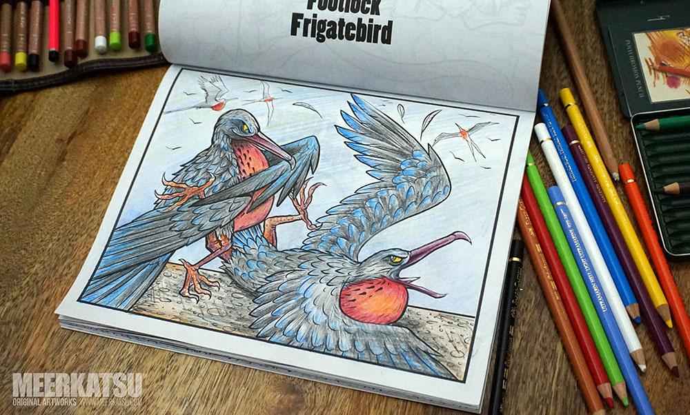 My Coloured In Version Of The Frigatebirds