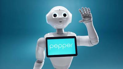 Pepper robot RapikanDotCom