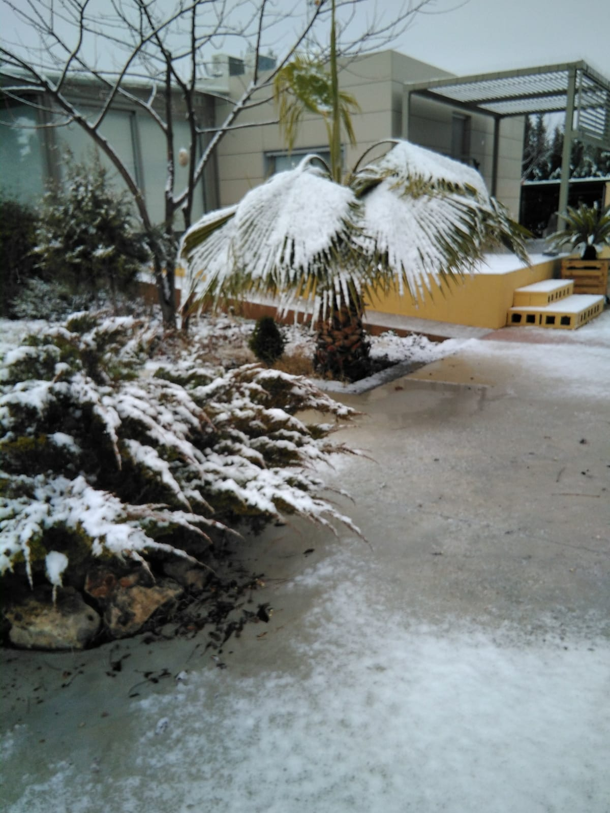 Casita nevada. Enero 2021