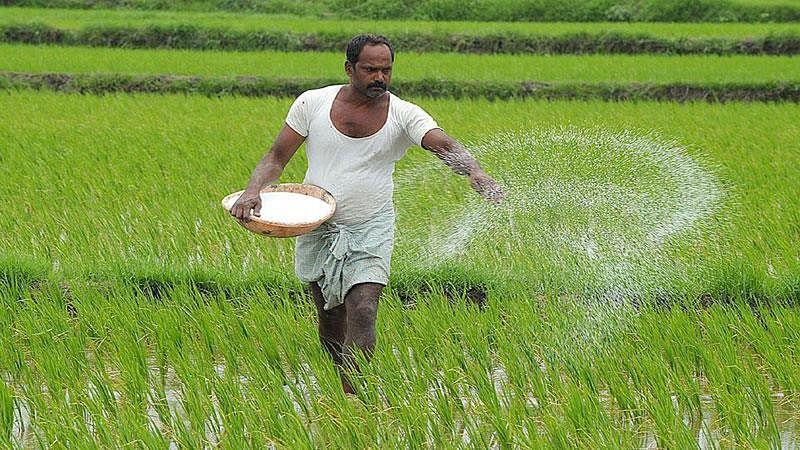 માત્ર ખેડૂતોજ લઇ શકશે લાભ, સરકારની નવી યોજના, હમણાંજ  ભરો ફોર્મ