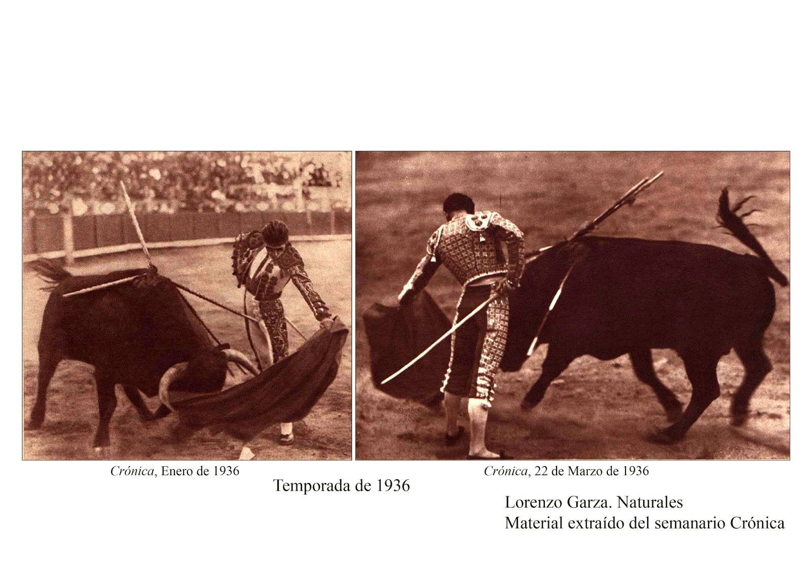 Corrida De Toros Monterrey Mexico