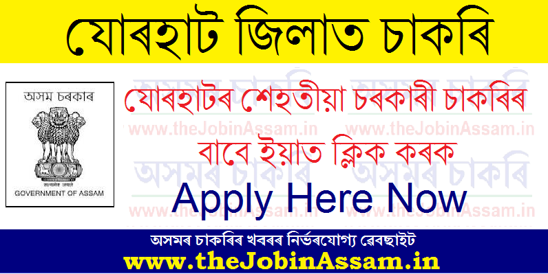 Jobs in Jorhat: Latest Vacancies in Jorhat