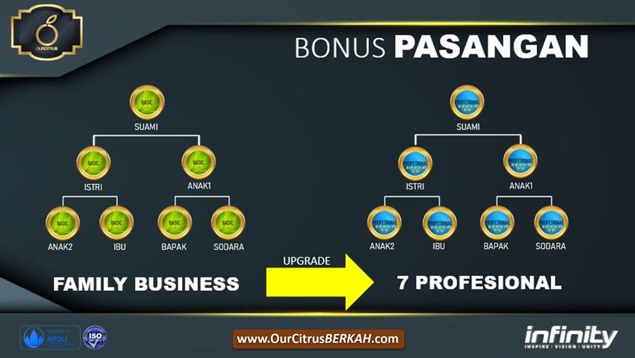 sistem bisnis mlm