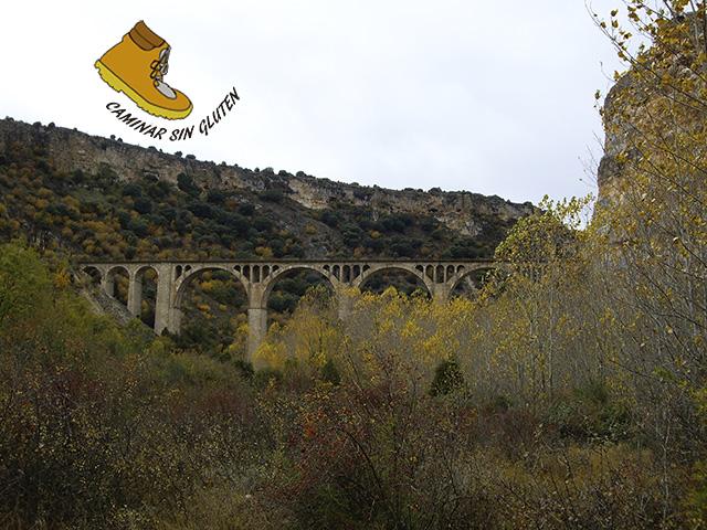 Viaducto Ferrocarril Madrid-Burgos en las Hoces del río Riaza