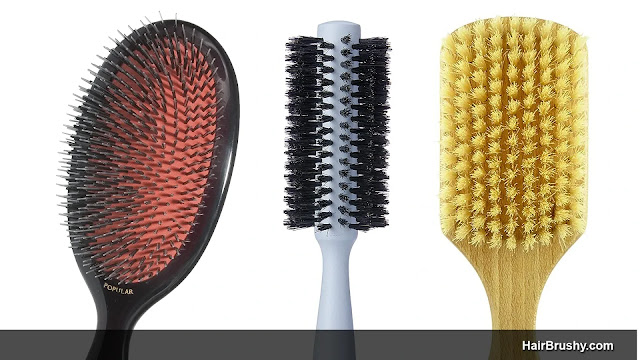 Best Boar Brushes