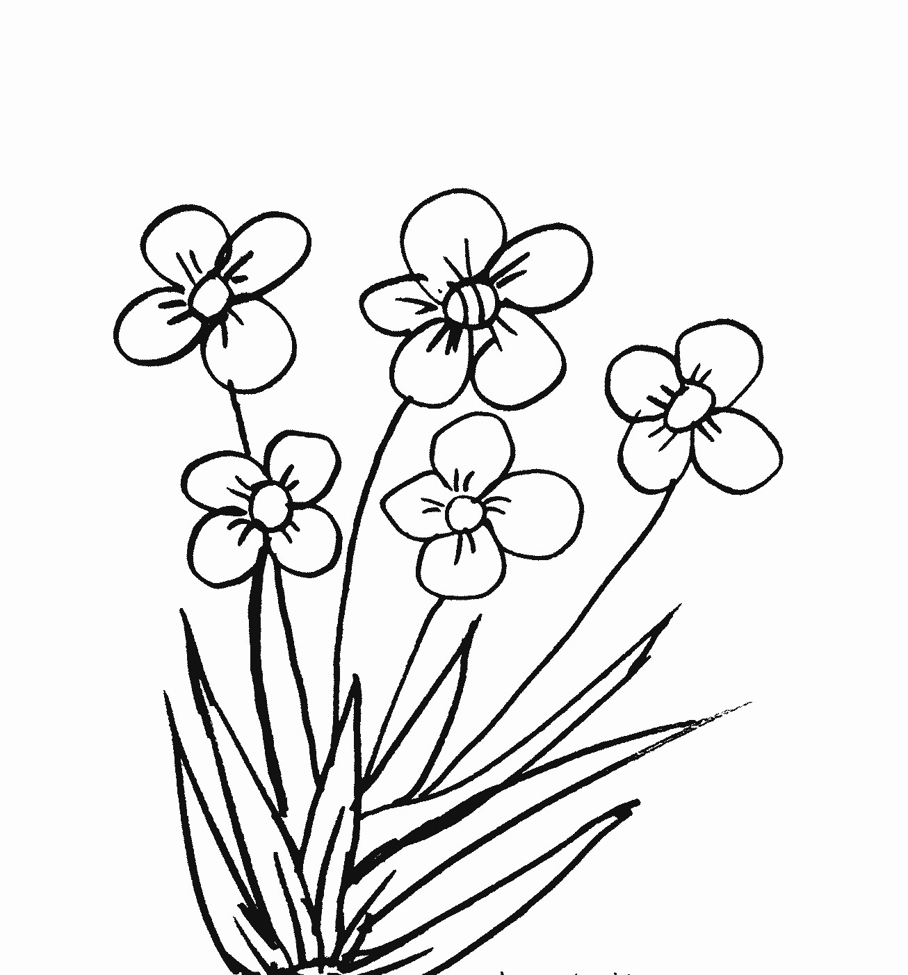 The Best Cara Mewarnai Gambar Bunga Teratai