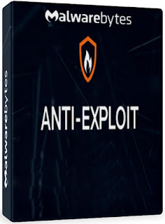 Malwarebytes Anti-Exploit is a straightforward piece of software that protects your system's vulnerable points from web-based attacks.
