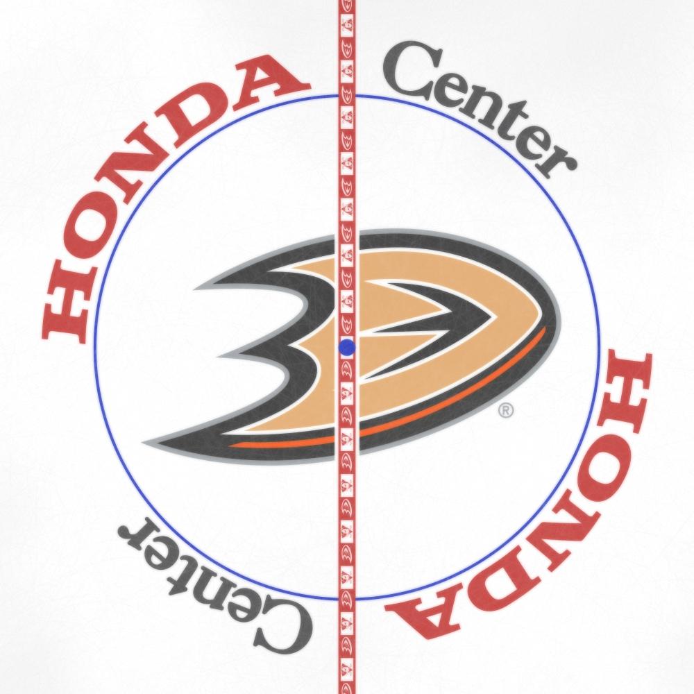 Anaheim Ducks 2020