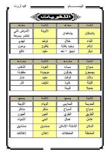 مذكرة لغة عربية رائعة للصف الثالث الابتدائي الترم الأول للاستاذ محمد ثروت