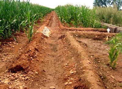 pengairan gravitasi peran fisika dalam bidang pertanian