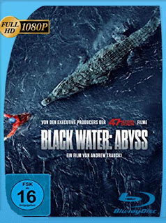 Abismo (Black Water: Abyss) (2020) HD [1080p] Castellano [GoogleDrive] PGD