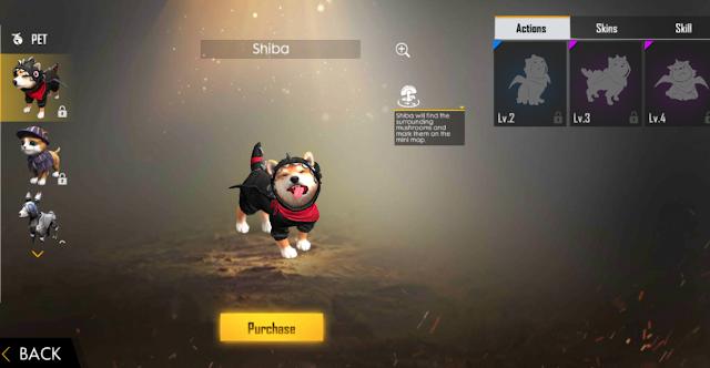 Advance Server FF Pet Terbaru Shiba Binatang Bisa Terbang