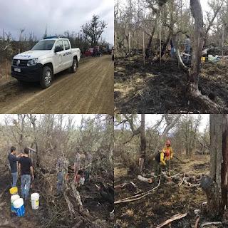 Incendio forestal en Las Vertientes