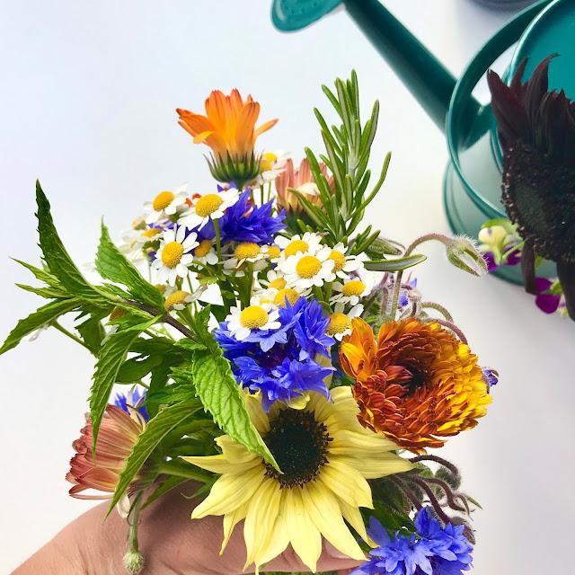 Growing a Cutting Garden Flowers UK