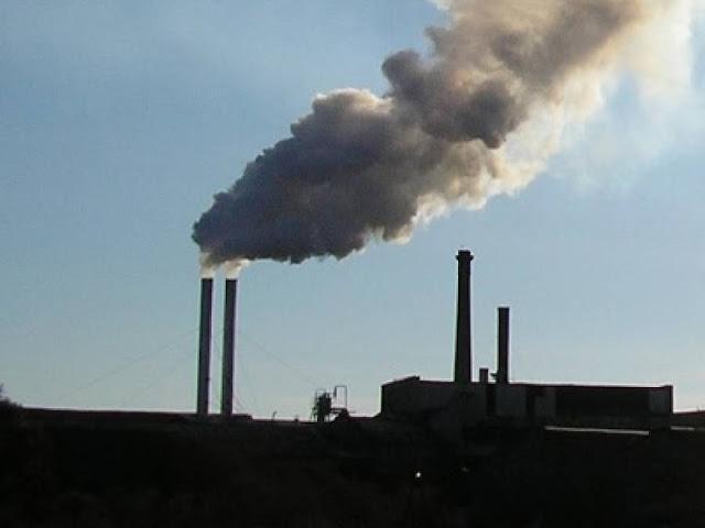 Ν. Γόντικας: Ρίχνουν τις ευθύνες ο ένας στον άλλο για την κατάσταση στα πυρηνελαιουργεία