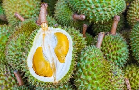 Empat Kuliner Favorit Indonesia, Tapi Dihindari Wisatawan Asing