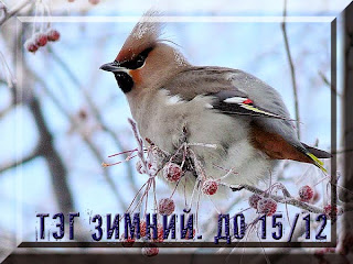 http://hobbyroomperm.blogspot.ru/2014/11/15.html
