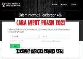 Cara Input PUASN ASN 2021 Sistem Informasi Data Email ASN