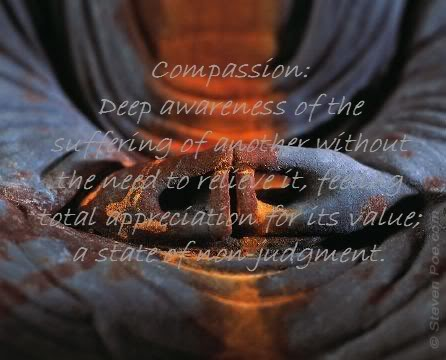 Compassion Quotes on Diagram Of The Soul