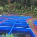 Sistem Budidaya Ikan Dengan Wadah Kolam Terpal dan Cara Pembuatannya