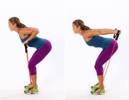 Triceps Kickbacks using ropes