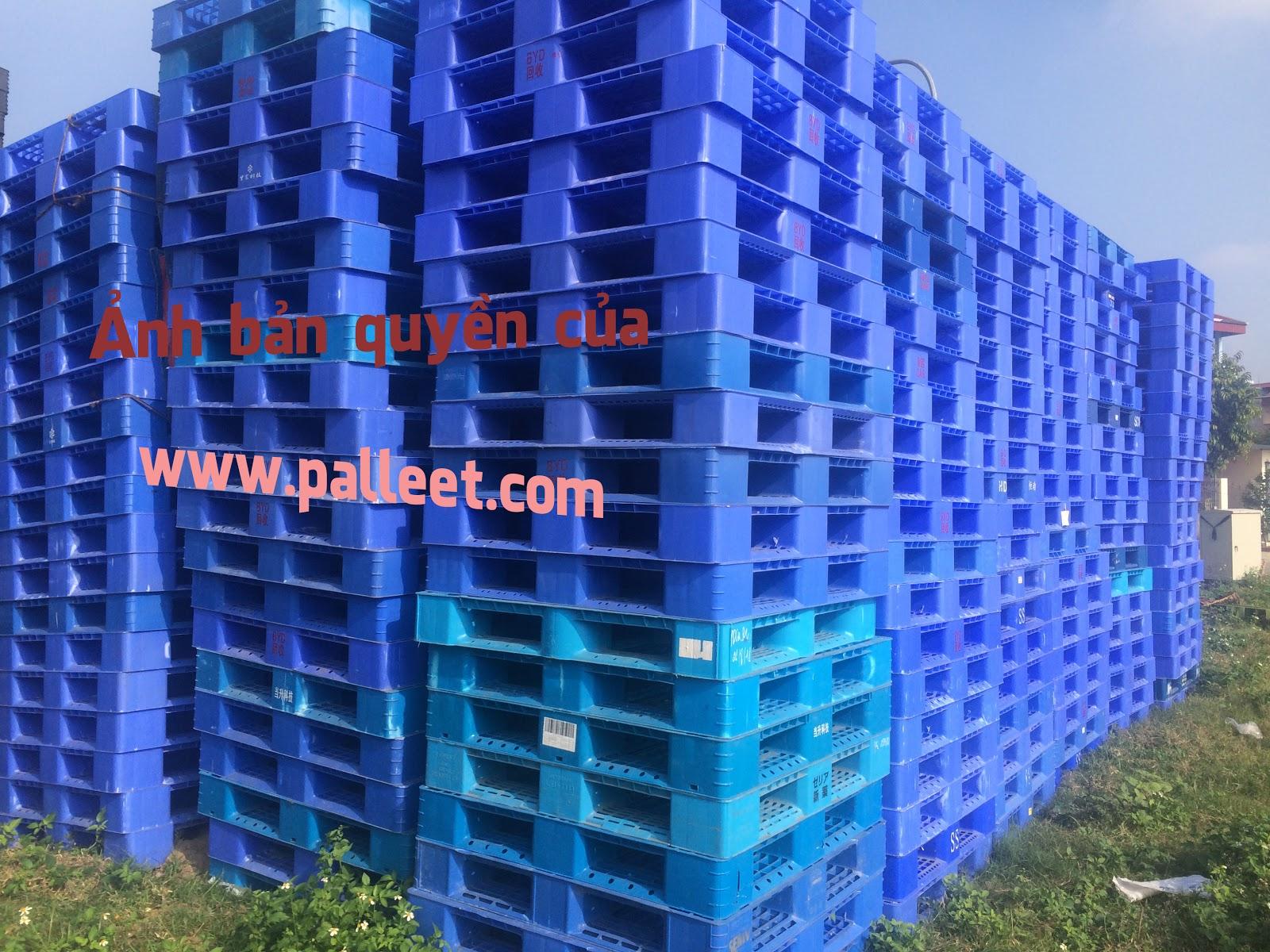 cung cấp rất nhiều các dòng pallet nhựa cũ có size khác nhau tại cơ sở này