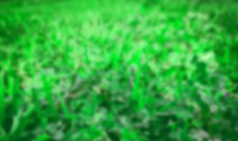 Green Blur Full HD CB Background Free Stock Image [ Download ]