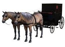 Dream ok Karl Benz to create self propelled wagen instead of horse pulled carts autocurious