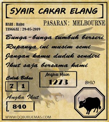 SYAIR MELBOURNE 29-05-2019