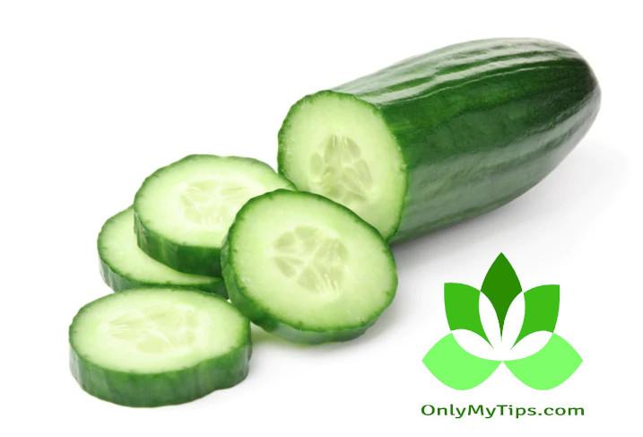 खीरा - Cucumber