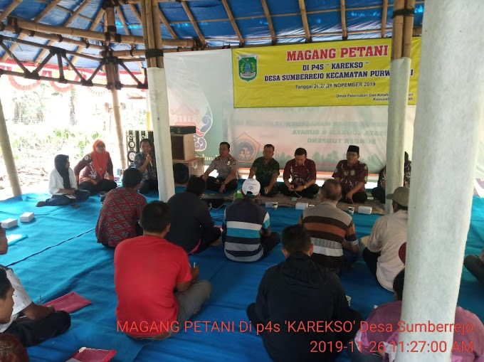 Danramil 0819/21 Purwosari Hadiri   Pelatihan Pertanian Dan Perdesaan Swadaya (P4S) Desa Sumberjo