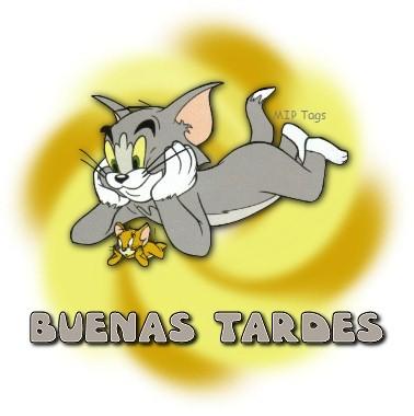 Tom y Jerry Buenas Tardes