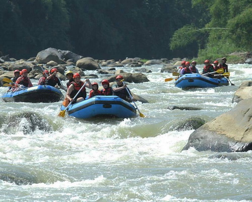 Tinuku.com Elo river rafting down river class 2 to 3 around Borobudur temple and if lucky watch monitor lizard on rocks