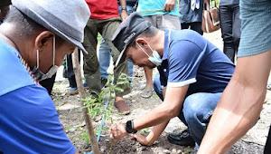 Wali Kota : Pohon Lamtoro Teramba Berfungsi Sebagai Pakan Ternak