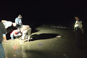 Bayi Perempuan Ditemukan Tewas di Tepi Pantai Tuban