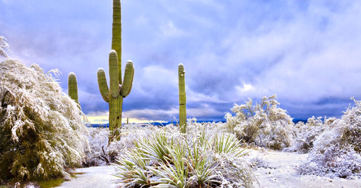 Rare Snowfall in Arizona Turned Rocky Desert Into Magical Winter Scenery