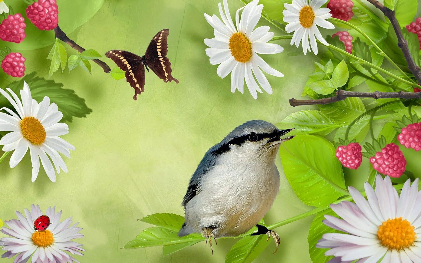 Zomer foto met vogel, vlinder en bloemen