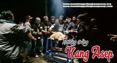 kambing guling lembang, Bakar Kambing Guling Di Lembang ~ 082216503666
