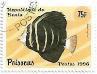 Selo peixe marinho