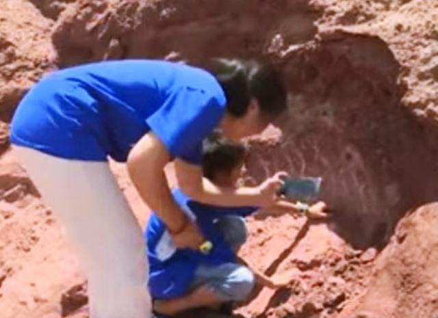 Fosil Telur Dinosaurus Usia 66 Juta Tahun - asione