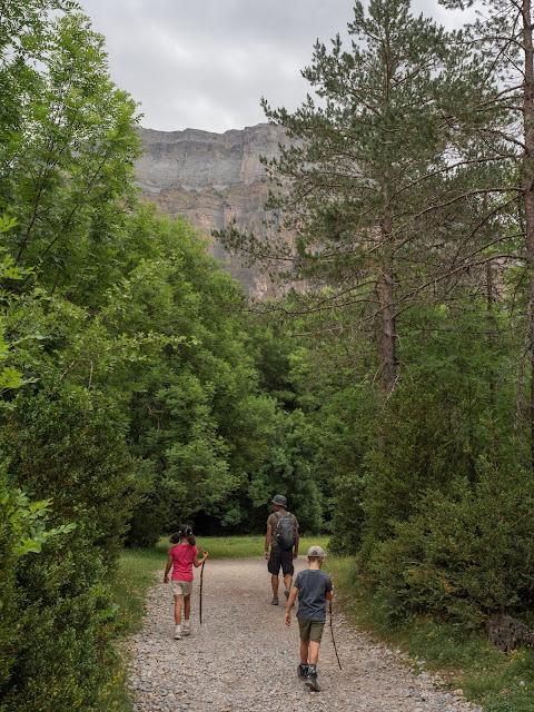 Padre e hijos caminando por un camino en el bosque de Ordesa con la montaña al fondo
